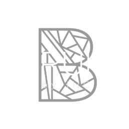 BRUIS by IHC logo
